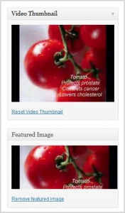 video-thumbnail-plugin